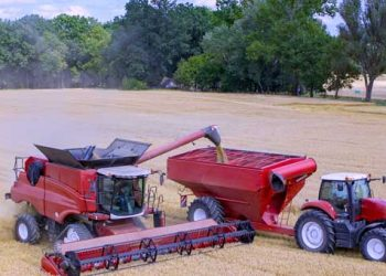 Agribusiness-wheat-combine