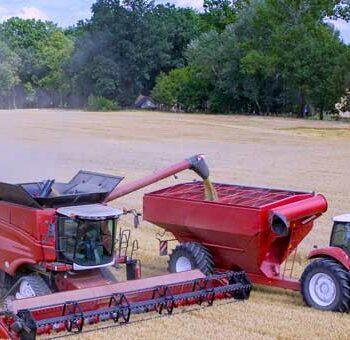 Agribusiness-wheat-combine